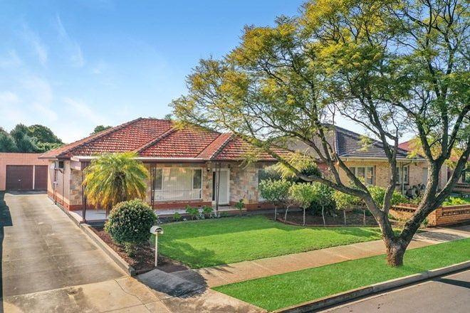 Picture of 12 Janet Avenue, GLYNDE SA 5070