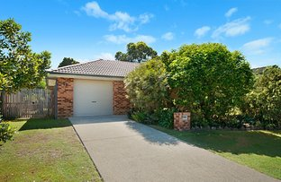 Picture of 16 Cypress Court, Byron Bay NSW 2481