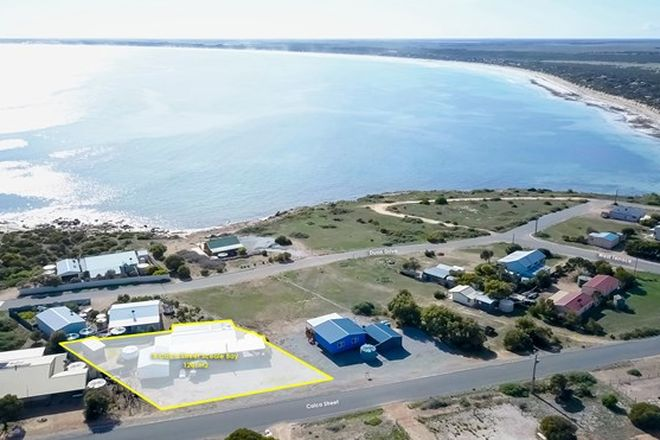 Picture of 8 Calca Street, SCEALE BAY SA 5680