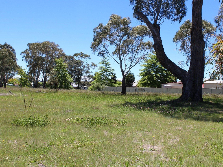 67 Abbott Street, Glen Innes NSW 2370, Image 0