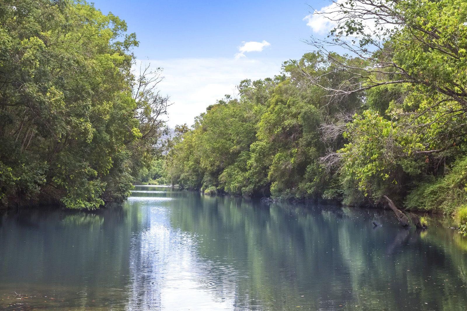 561 Kidaman Creek Road, Obi Obi QLD 4574, Image 0