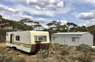 Picture of 588 Mallee Acres Road, Fisher SA 5354