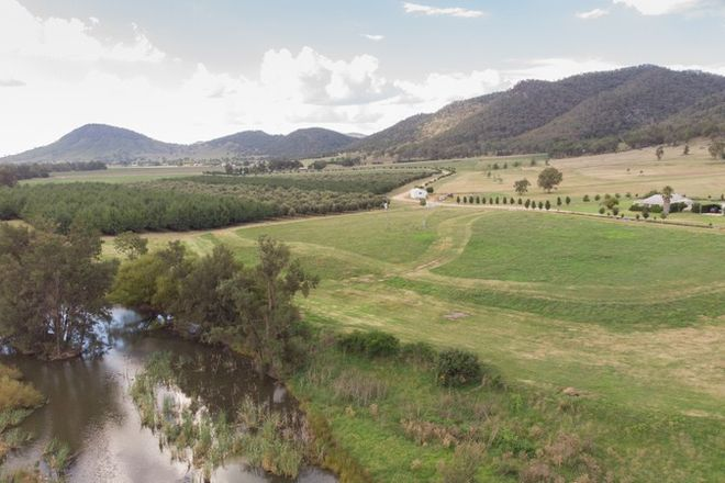 Picture of 501 Melrose Road, MUDGEE NSW 2850