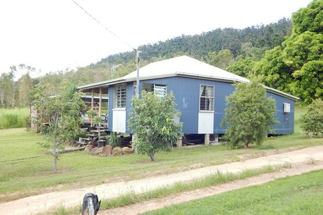 Picture of 13350 Bruce hwy, MYRTLEVALE QLD 4800