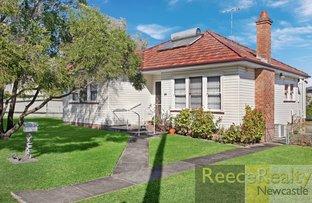 29 Mary Street, Jesmond NSW 2299