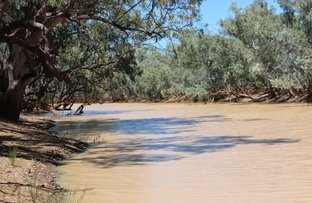 Picture of Bulls Gully Adavale-Quilpie Rd, Quilpie QLD 4480