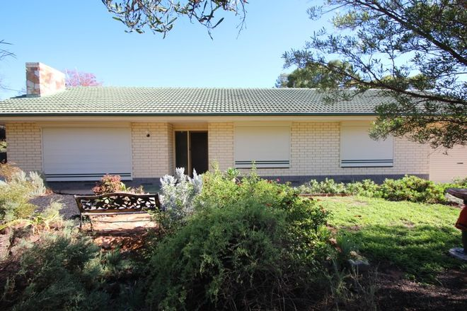 Picture of 100 Pyap Street,, RENMARK SA 5341