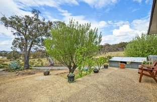 Picture of 684 Carrick Rd, Carrick NSW 2580