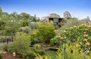 Picture of 11 Meadows Road, Withcott QLD 4352