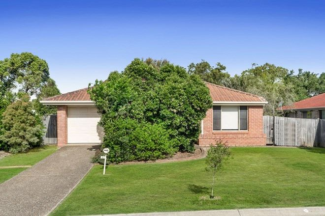 Picture of 14 Pinewood Street, WYNNUM WEST QLD 4178