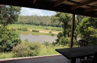Picture of 155 Kalbar Rd, South Kolan QLD 4670
