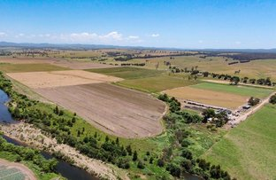 Picture of LINDENOW VEGETABLE FARM; MITCHELL RIVER VALLEY, Wuk Wuk VIC 3875