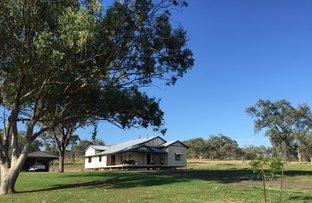 'Glenreagh' 1109 Greenmount-Hirstvale Road, Hirstglen QLD 4359