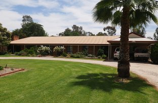 Picture of 25 Lillypilly Road, Leeton NSW 2705