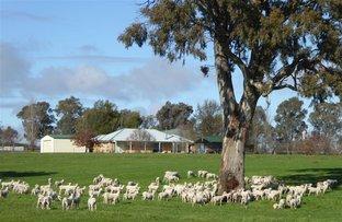 39 Bethel Road, Burrumbuttock NSW 2642