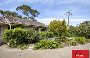 Picture of 137 Theodore Street, Curtin ACT 2605