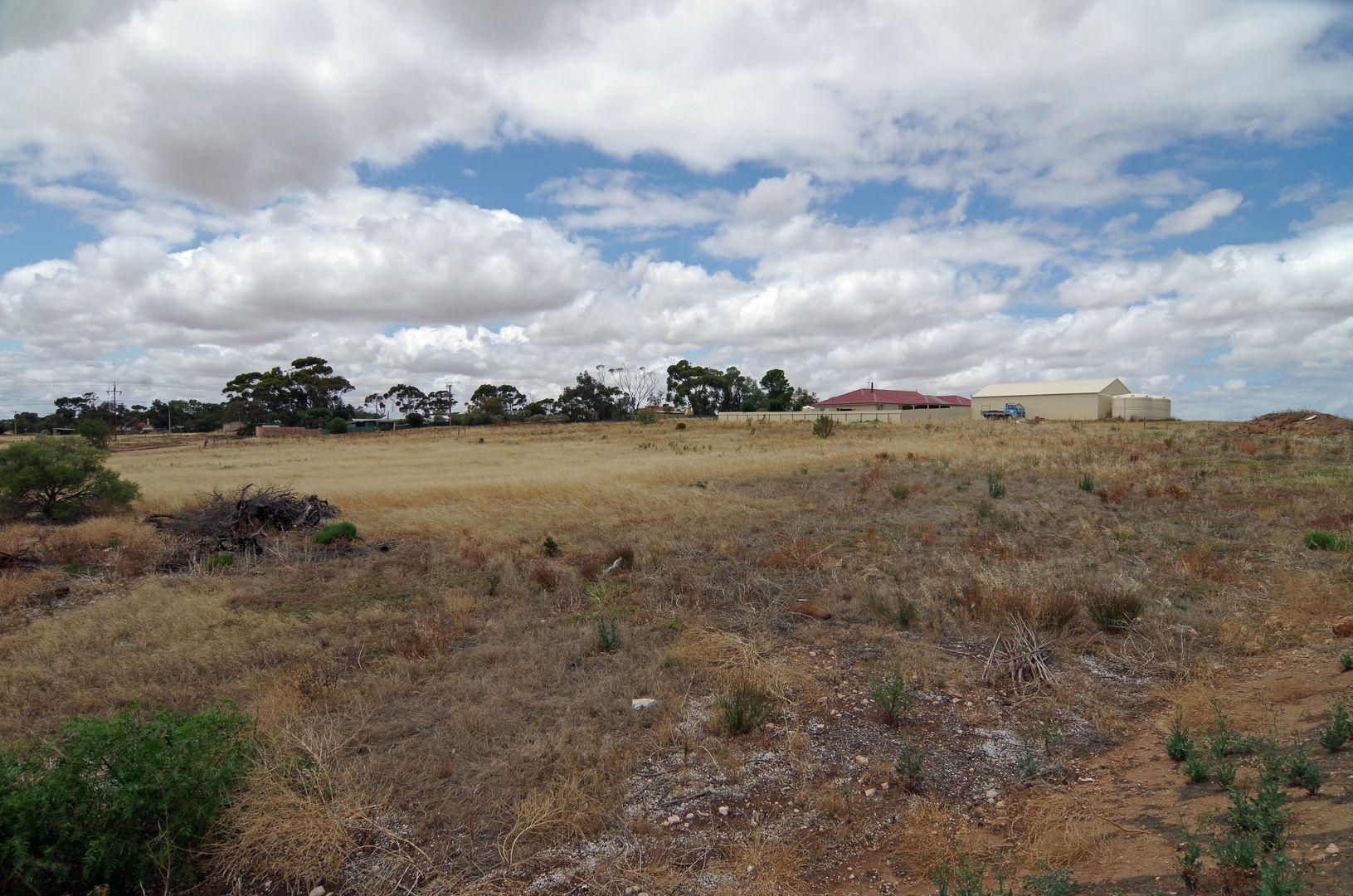 729 Morcombe Road, East Moonta SA 5558, Image 1