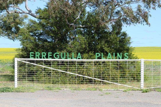 Picture of Erregulla Plains, Midlands Rd, MINGENEW WA 6522