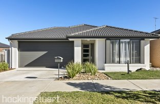 Picture of 14 Pimelea Way, Torquay VIC 3228