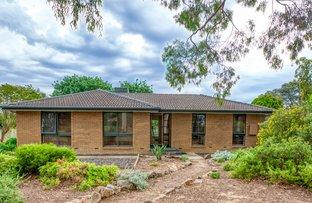 Picture of 17 Crackenback Street, Thurgoona NSW 2640