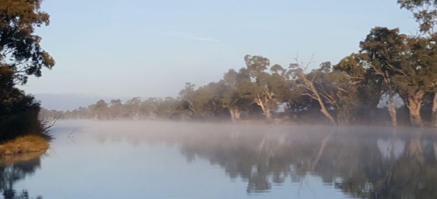"Lot 8 ""Riverton Farm"" Stage 2 Subdivision, Wentworth NSW 2648, Image 0"