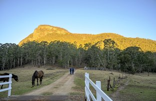Picture of 872 Condamine River Road, The Falls QLD 4373