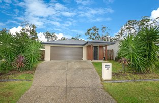 Picture of 40 Mieka Crescent, Pimpama QLD 4209