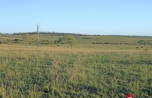 Picture of 0 Dalgangal Road, Gayndah QLD 4625