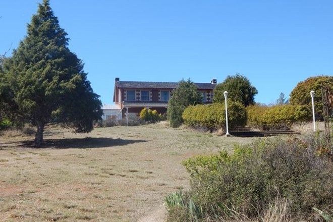 Picture of 270 Dry Plains Road, DRY PLAIN NSW 2630