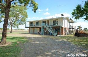 Picture of 679 Valentine Plains Rd, Biloela QLD 4715