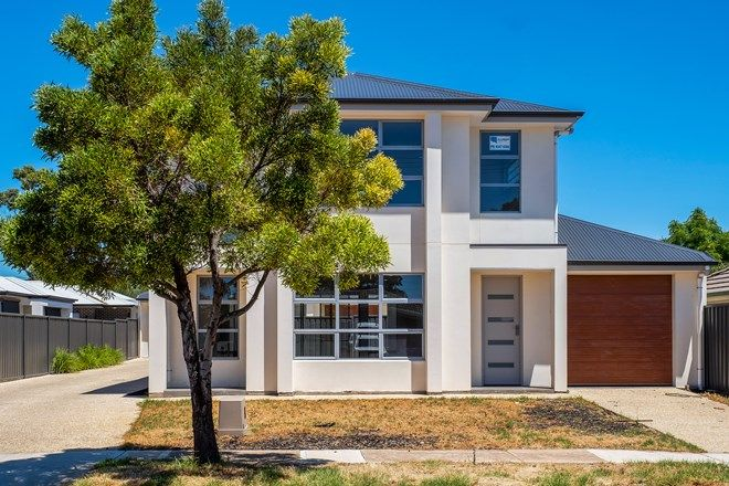 Picture of 2 Shearing Street, OAKLANDS PARK SA 5046