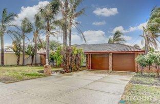 Picture of 64 Winterfold Road, Samson WA 6163
