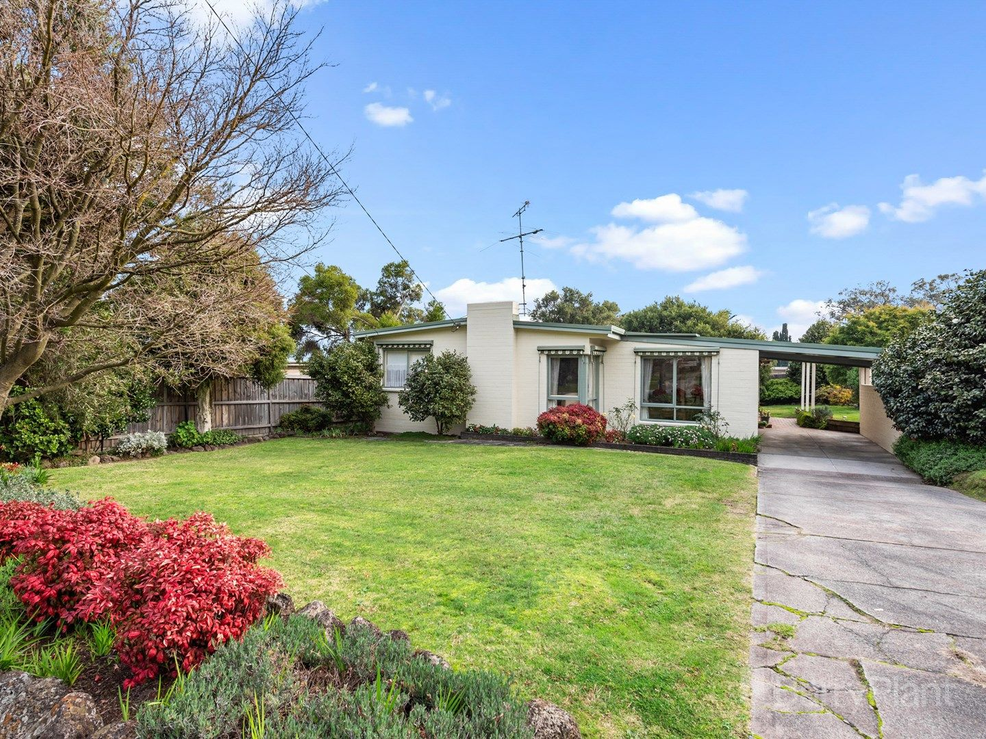 81 Forest Road, Ferntree Gully VIC 3156, Image 0