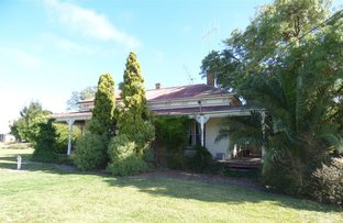 Picture of 84-106 Main Street, Goroke VIC 3412