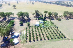 Picture of CA 24A Carmody Road, Toolleen VIC 3551