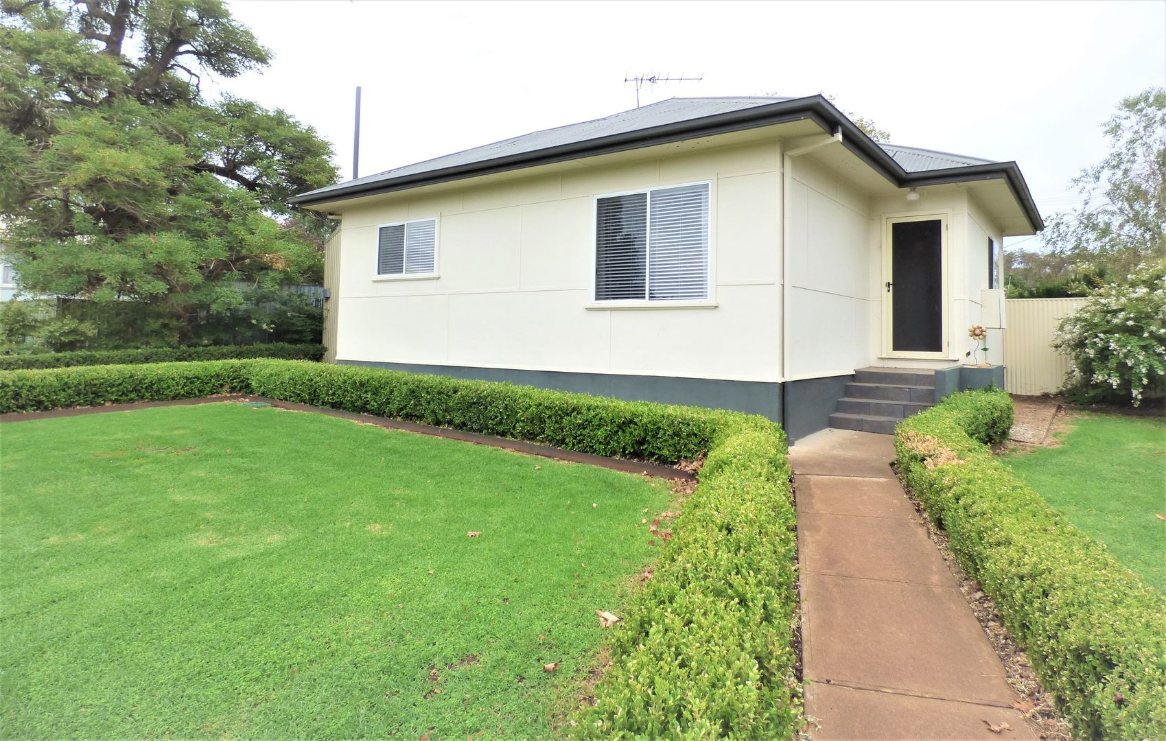 49 Curtin Street, Griffith NSW 2680, Image 0