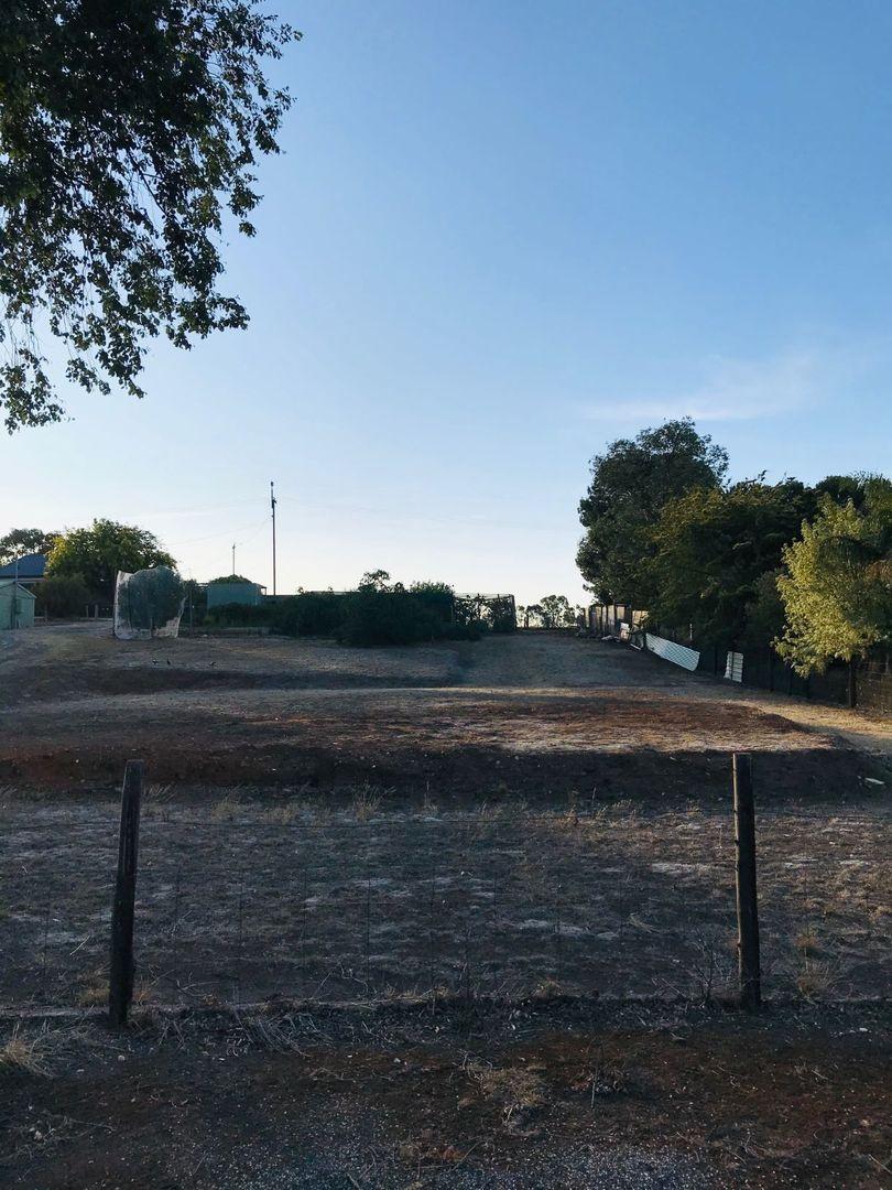 Lot 9 Truro Road, Moculta SA 5353, Image 0