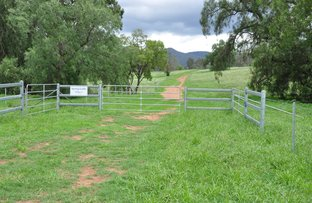 Picture of 304 Doyles Creek Road, Doyles Creek NSW 2330