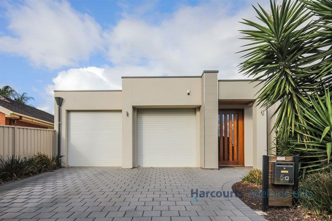 Picture of 5A Newman Street, MAGILL SA 5072