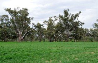 Picture of 3931 Old Narrandera Road, Currawarna via, Wagga Wagga NSW 2650