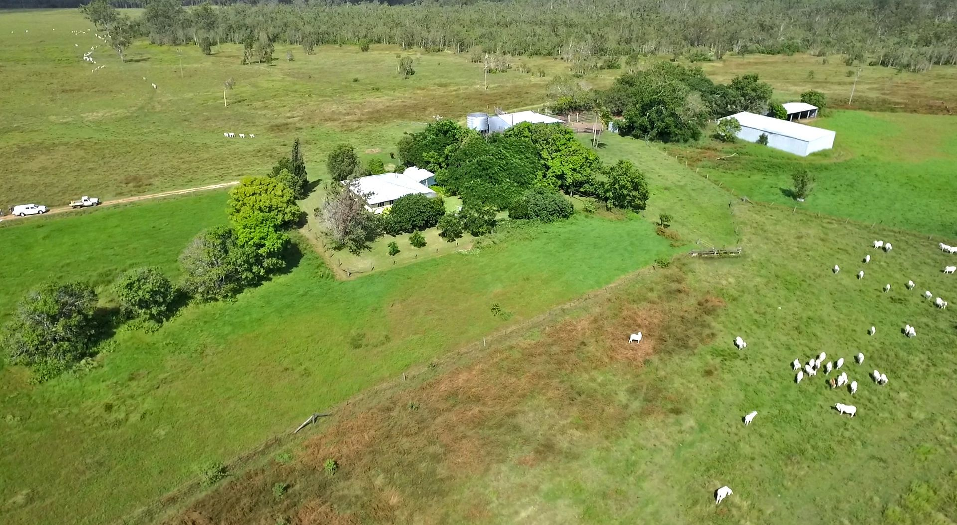 145 Midge Point Road, Bloomsbury QLD 4799, Image 0