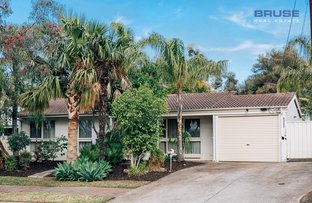 Picture of 12 Silvermere Avenue, Paradise SA 5075
