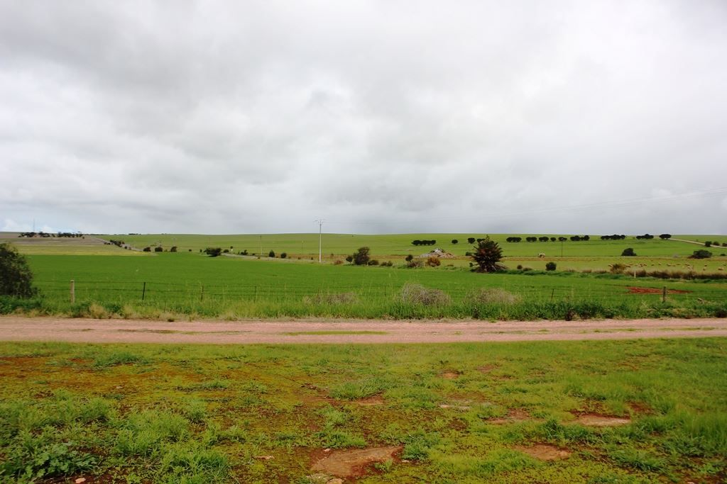 Lot 169 South Terrace, Curramulka SA 5580, Image 0