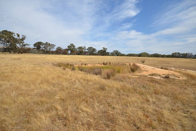 Picture of CA 66 Off Morrows Road, BARKLY VIC 3384