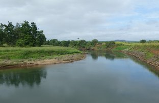 Picture of Upper Daradgee QLD 4860