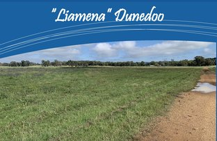 Picture of Castlereagh Highway, Dunedoo NSW 2844