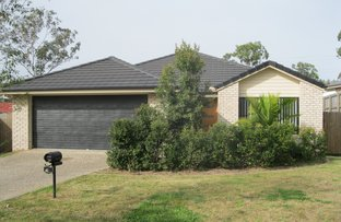 Picture of 42 McCorry Drive, Collingwood Park QLD 4301