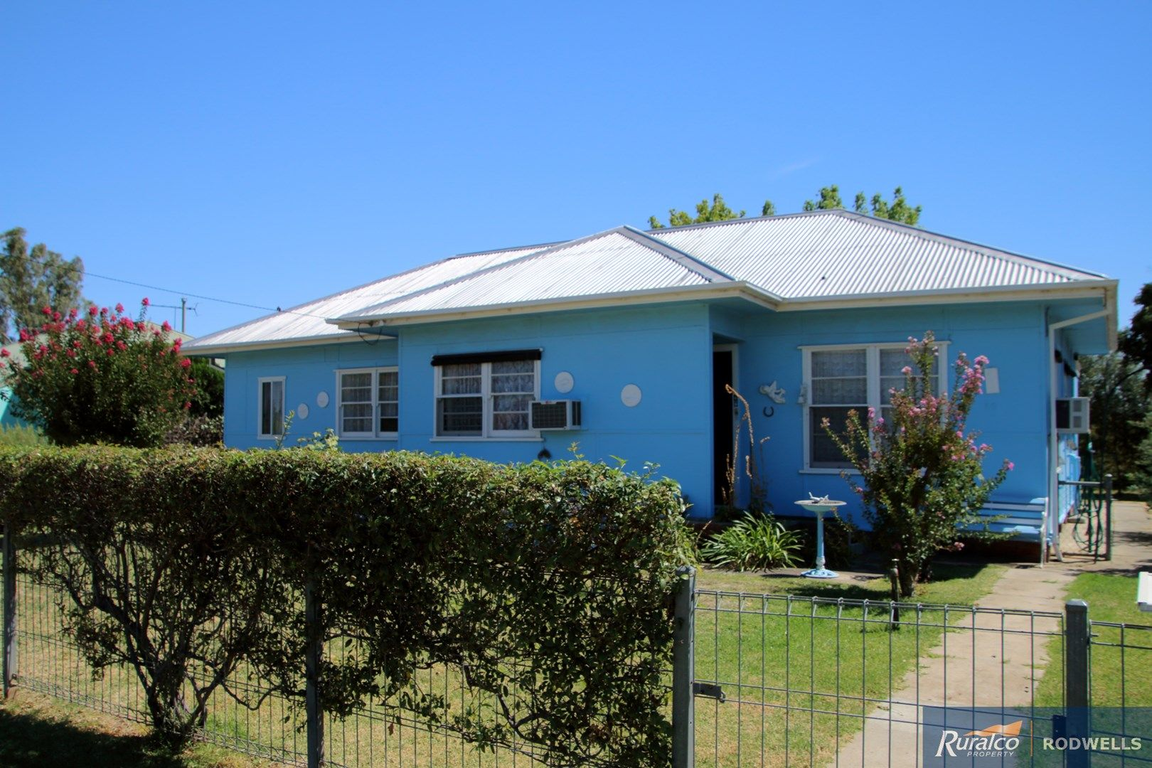 10 Douglas Street, Culcairn NSW 2660, Image 0