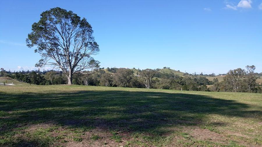 Lot 49 Watergum Drive, Pie Creek QLD 4570, Image 2