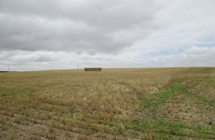 Picture of Lot 103 Kulde Road, Tailem Bend SA 5260